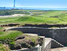 Torrey Battery picture