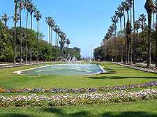 Jardin d'Essai du Hamma image (Algiers Botanical Gardens)