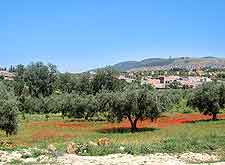 Scenic view of the Tlemcen National Park