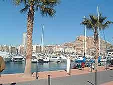 View of Alicante's Explanada