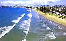 Auckland Beaches