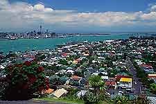 Auckland Travel and Transport