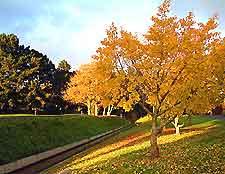 Auckland Golf Courses
