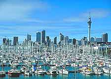 Auckland Sports and Outdoor Activities