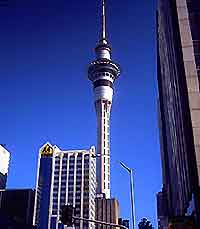 Auckland Restaurants and Dining