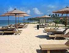 Summer beachfront picture