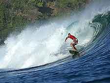 Bali Tourist Attractions: Photo of summer surfer