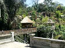 Bali Tourist Attractions: Picture taken in Ubud