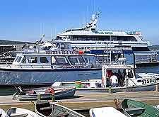 Bar Harbor Tourist Attractions: Image showing whale watching cruise boats