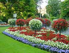 Bath Parks and Gardens