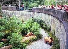 View of the Barengraben (Bear Pits)