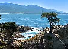 Coastal view, showing famous nearby cypress tree