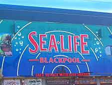 Sea Life Centre picture