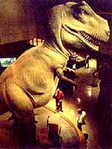 Photo of the Museum of Science's T-Rex replica
