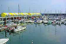 Brighton Sports and Outdoor Activities