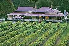 Brisbane Vineyards and Wines