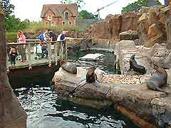 Photo showing Bristol Zoo one of the many attractons of the city