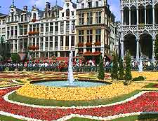 Picture showing spectacular display of flowers in the Grote Markt
