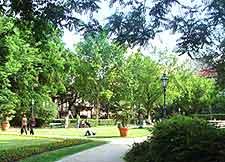 Photo of Karolyi Garden