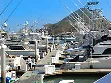 Photo of fishing boats, docked in the city marina
