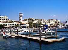 Picture of the marina in the summer