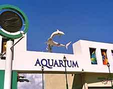 Interactive Aquarium picture (Acuario Interactivo)