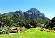 Kirstenbosch National Botanical Gardens picture