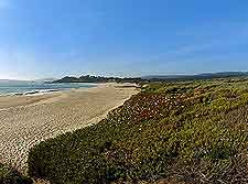 Carmel River State Beach picture