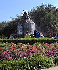 Pineapple Fountain picture