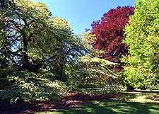 Christchurch Parks and Gardens
