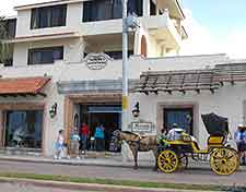 Photo of shops and horse and carriage rides