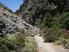 Photo of hiking trail at the Agia Irini Gorge, Crete, Greece
