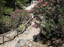 Picture of hiking trail taken at the Agia Irini Gorge