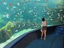 Creteaquarium (Crete Aquarium) image