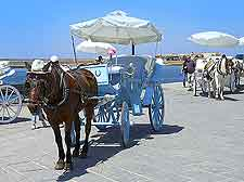 Photo of horse and carriage ride
