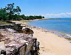 Darwin Information and Tourism