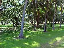 Darwin Golf Courses