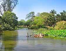 Durban Botanic Gardens photo