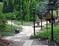 Mitchell Park image