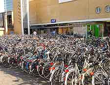 Eindhoven Airport (EIN) Airlines, Terminals and Facilities: Picture of bicycles outside of the train station