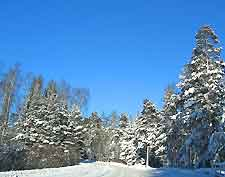 Photograph depicting winter in the region