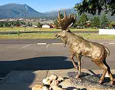Photograph of central elk statue