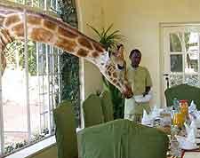 Picture of Giraffe Manor House in Kenya