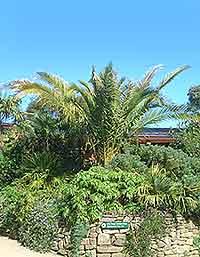 Image of gardens