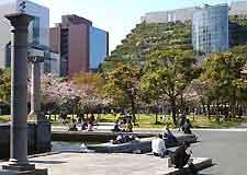 Distant view of the ACROS Fukuoka Building