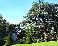 Photo of topiary at the Parc de Beaulieu