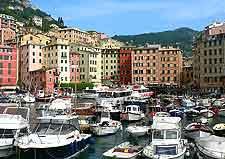 Picture of marina at Camogli