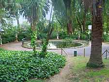 Photo of pond and palm trees at the Parchi di Nervi