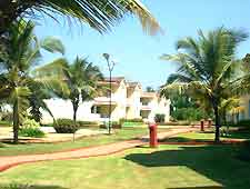 Goa beach resort photo