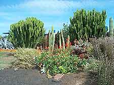 park gran canaria